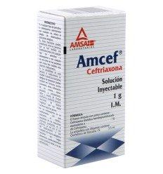 AMCEF 1 gr (solución inyectable) IM 3.5ml