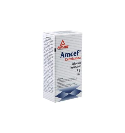 AMCEF 1 gr (solución inyectable)