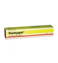 FLAMYGEL TUBO CON 60 G